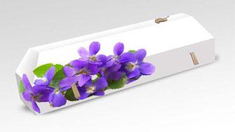 cercueil-en-carton-ab-cremation-brigitte-sabatier-violette