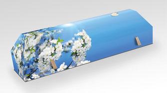 cercueil-en-carton-ab-cremation-brigitte-sabatier-cerisier-blanc