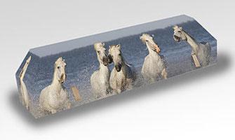 ab-cremation-brigitte-sabatier-cercueil-en-carton-ondule-cremation-modeles-passion-animale