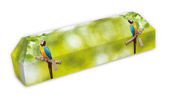 cercueil-en-carton-ab-cremation-brigitte-sabatier-perroquet
