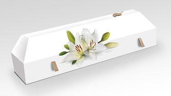 cercueil-en-carton-ab-cremation-brigitte-sabatier-lys-blanc
