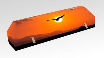 cercueil-en-carton-ab-cremation-brigitte-sabatier-aigle