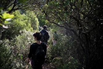 Escursioni trekking Sardegna