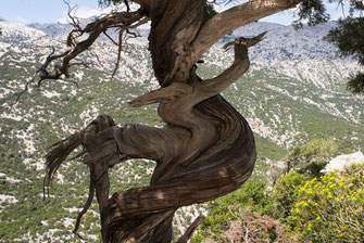 Randonnée en Sardaigne: entre sport et aventure