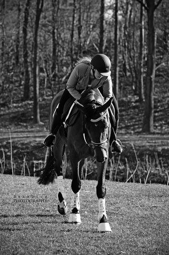 sportmasseur paard, voedingsdeskundige paard, professioneel scheren