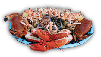 Plateau de fruits de mer Le Royal - Le P'tit Cancale Le Havre
