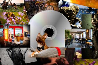 Printprodukte / CD & DVD's - schick! photography | Ihr professioneller Fotograf in Zofingen