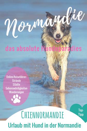 Urlaub mit Hund in der Normandie; Euer Online-Reiseführer für den Urlaub mit Hund