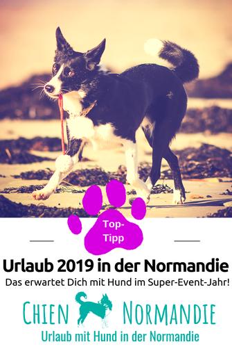 Urlaub 2019: Das müsst Ihr wissen, wenn Ihr dieses Jahr in der Normandie wollt!