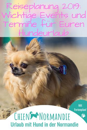 Reiseplanung 2019: Das müsst Ihr für Euren Hundeurlaub in der Normandie wissen!