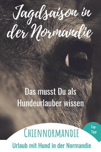 Hundeurlaub in der Normandie: Wichtige Infos zur Jagdsaison