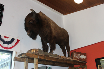 RAHOCA Buffalo Mission