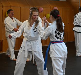 Training mit Erwachsenen in der Taekwondo - Sportschule Adelzhausen Selbstverteidigung für Frauen, Thomas Seiler unterrichtet Techniken zur Selbstverteidigung. Die TOP-Adresse im Landkreis Aichach-Friedberg
