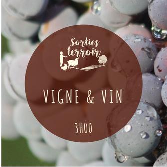 terroir ; dégustation ; oenologie ; vin ; vignoble ; loire ; bio ; biodynamie ; La Roche