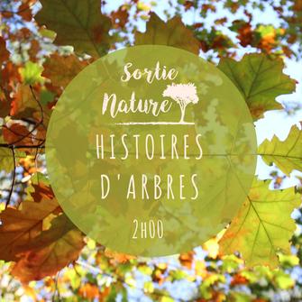 La Pomardière (ENS) - Saint-Benoît-la-Forêt - Touraine Terre d'Histoire