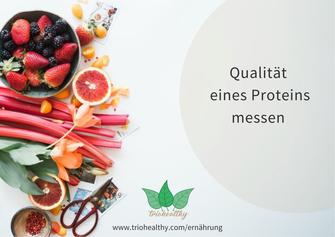 Qualität eines Proteins messen