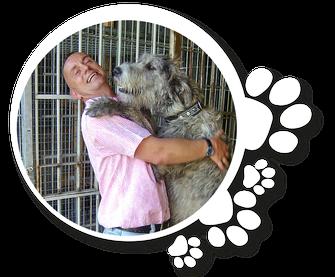 Hundebetreuung © Tiernanny24