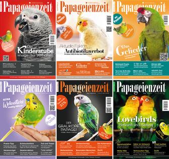 Ausgaben Papageienzeit des aktuellen Jahrgangs