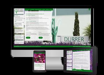 Webdesign - Sonma   Scheidegger Online Marketing - Ihr KMU-Partner für Webdesign und Social Media