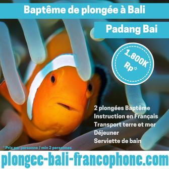 plongee_bali_bapteme_nemo_padang_bai