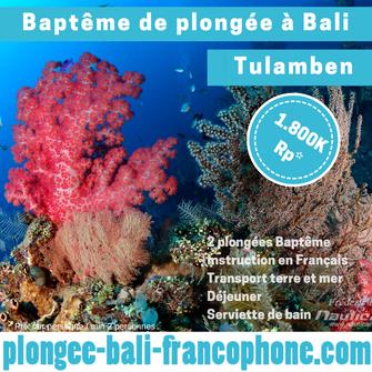 plongee_bali_bapteme_tulamben_liberty_épave