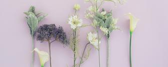 アートフラワーや造花の一覧