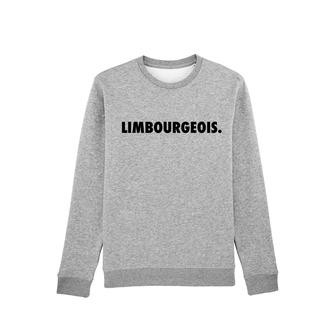 """LIMBOURGEOIS"" SWEATER  65€"