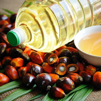 Glycidol in Palmöl verursacht Krebs