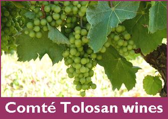 Comté Tolosan wines