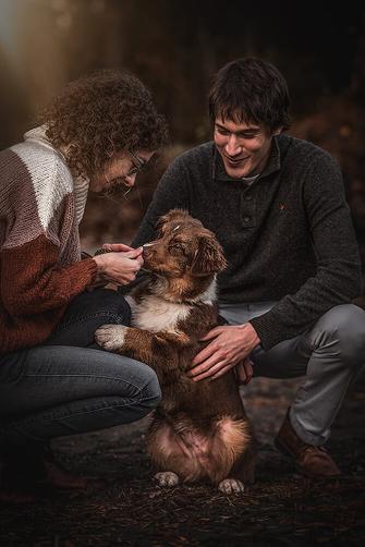 Paar mit ihrem Aussie Welpen sie füttern ihn am Strand fotografiert von der Familien Fotografin Monkeyjolie in der Ostschweiz