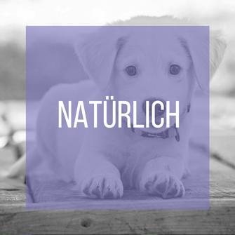 Hundewelpe als Button zu den natürlichen Inhaltsstoffen in der CANELO Hundepflege.
