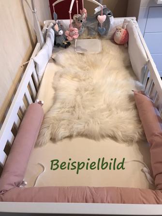 Lammfell, Schafffell, Skudde, Moorschnucke, Eifel, Nettersheim