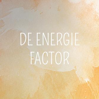 cursus - de energie factor