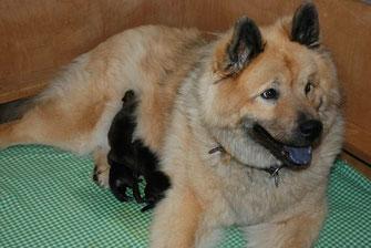 Dela mit ihren drei neugeborenen Mädels