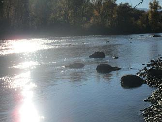 Steine im Fluss