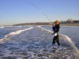 Fly Fishing surf perch San Diego