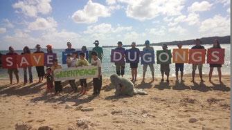 グリンピース 大浦湾 瀬嵩 浜 ビーチ save the dugongs  ジュゴン