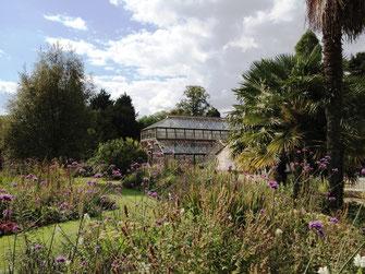 Botanischer Garten, Cambridge, UK