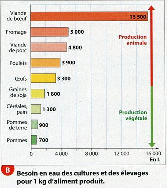 Source : Hatier SVT 2011 1ère ES/L
