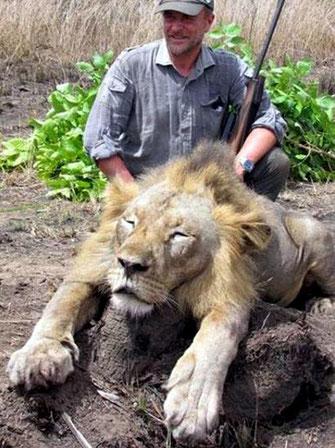 Uccidere animali o bestie umane? - Il veterinario Luciano Ponzetto.