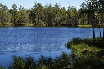Naturschutzgebiet Unteres Odertal