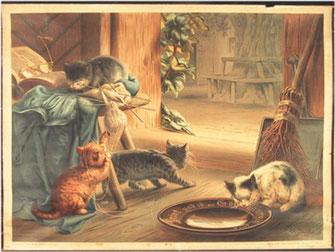 Illustration mit mehreren Katzenkindern