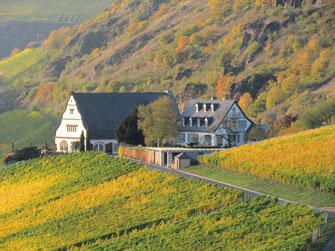 Weinreise in die Nahe - Blick auf ein Hotel im Weinberg