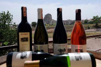 Weine aus der Türkei vom Weingut Kocabag