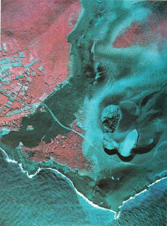 噴火後の新澪池付近(赤外カラー、アジア航測㈱撮影・提供)