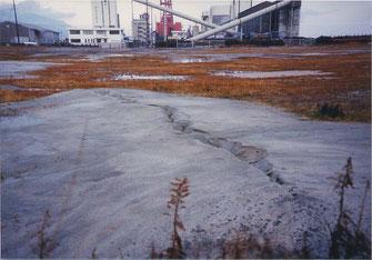 写真8 液状化現象,低地や埋立地では至る所で発生(撮影:遠藤)