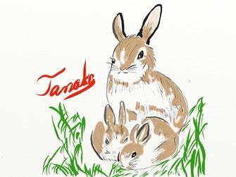 熊本城令和2年1月1日