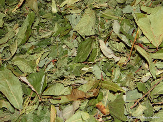 Blätter Mischung