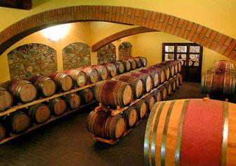 Bulichella cantina vinicola Suvereto