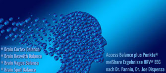 Access your Consciousness, Access Bars Anwendung
